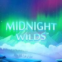 Midnight WIld