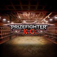 Prize Fighter KO
