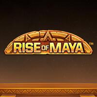 Rise of Maya