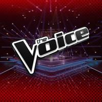 Scratch The Voice